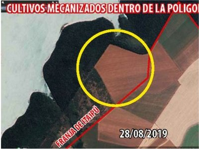 Senador advierte sobre sojales de brasileños en tierras de la Itaipú