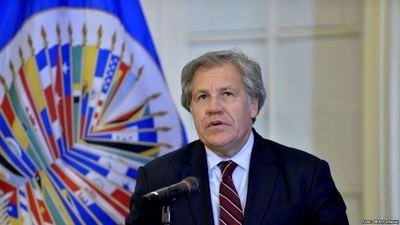 Los puntos clave del informe de la OEA que confirma el fraude en las elecciones bolivianas