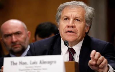 OEA pide cambio de autoridades electorales que garanticen comicios en Bolivia
