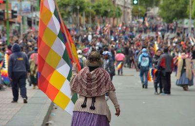 """Países de la OEA piden nuevas elecciones en Bolivia """"lo más pronto posible"""""""