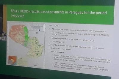 HOY / Reconocen a Paraguay por resultados en la reducción de la deforestación