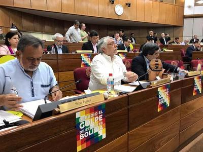 Senado no aprueba proyecto de Declaración sobre golpe en Bolivia