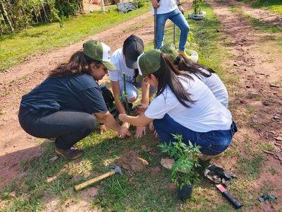 Quieren plantar 500 arbolitos para fortalecer el área verde en Itauguá