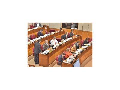 Los senadores ratifican beneficios y aumentos para 37 entes del Estado