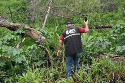 MADES interviene establecimiento por desmonte de 50 hectáreas en Itapúa