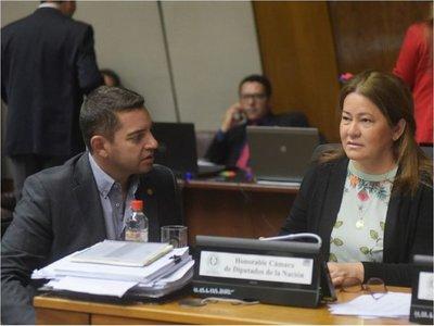 Los diputados rechazarán  veto  y aprobarán  plata para operadores