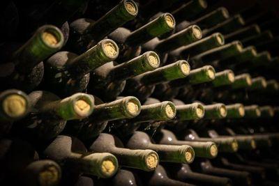 El sueño vinícola que viajó de Italia a Uruguay hace un siglo