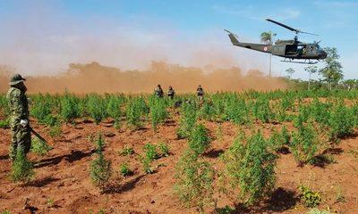 Investigarán posibles causas de la caída de helicóptero en PJC