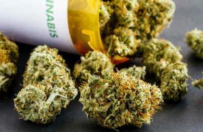 Un negocio lucrativo: Estados Unidos da el primer paso para legalizar la marihuana en todo el país