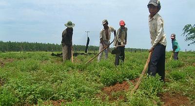 Laboratorio del PNUD busca afrontar desafíos actuales del desarrollo humano sostenible