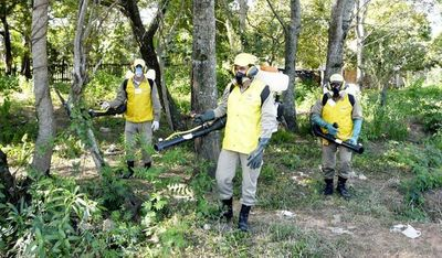 Lucha en bloque contra el dengue, el zika y la chikunguña