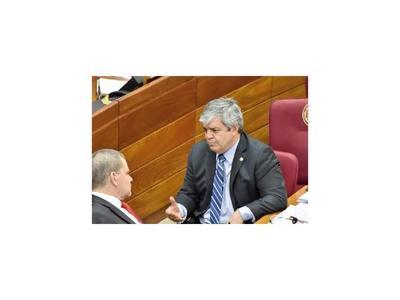 Riera dice que caso Cartes es aprovechado por detractores