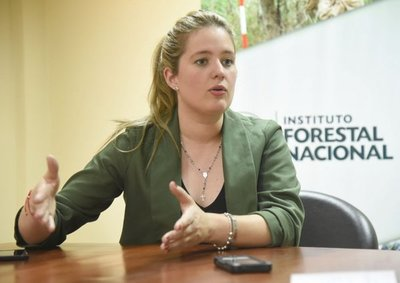 El camión de presunto tráfico de rollos proviene de un plan forestal, afirman