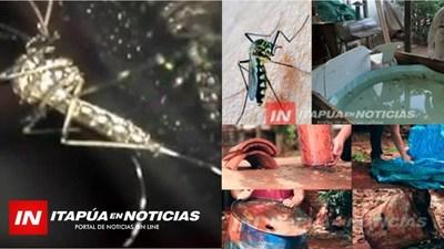 ENCARNACIÓN CUENTA CON 8,8% DE INFESTACIÓN LARVARIA