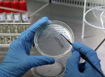 """Modifican bacteria para que """"coma"""" dióxido de carbono"""
