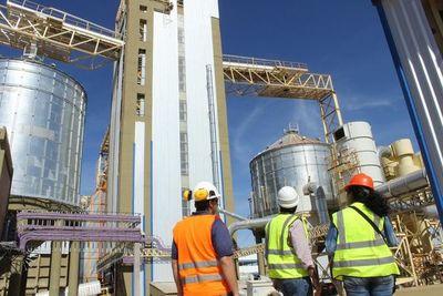Molienda se reduce en alrededor de 200 mil toneladas