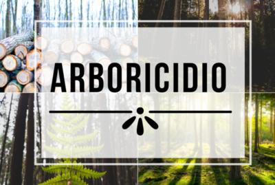 """La palabra """"arboricidio"""" ya está en el Diccionario de la Lengua Española"""