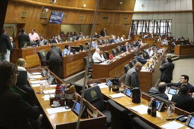 Cámara de Diputados trata hoy proyecto de Presupuesto 2020