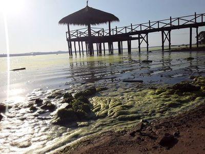 Usarán drones acuáticos para tratar de recuperar el lago Ypacaraí