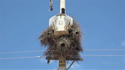 Pobladores reclaman cortes constantes de electricidad de la ANDE