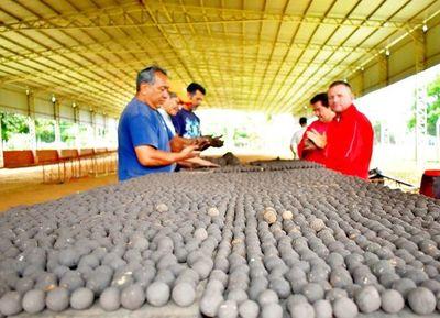 Más de 120.000 bombas de semillas para el  Ybytyruzú