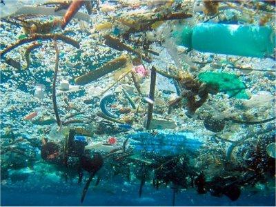 Cambio climático mermará oxígeno de los océanos hasta un 4% en 2100