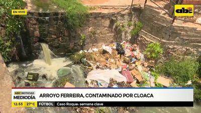 Arroyo Ferreira contaminado por cloaca