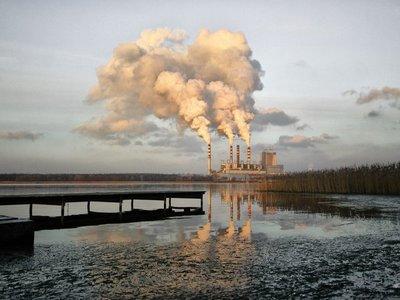 Abogan por creación de corte penal internacional de medioambiente