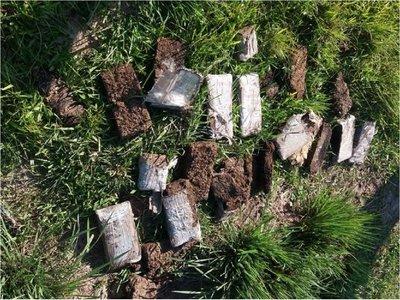 Hallan 11  kilos de marihuana en descomposición en Itapúa