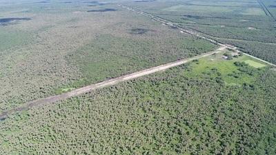 Operación TIJERA: Incautan 300 kilos de cocaína en el Chaco