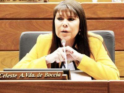 Ejecutivo deberá promulgar ley de pensión para adultos mayores. Diputados también rechazó el veto