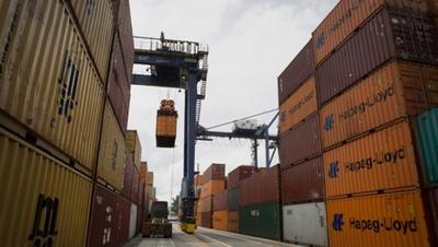 Exportación de carne de ave cae un 12,36%