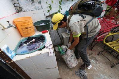Aumentan de casos de dengue en área Metropolitana