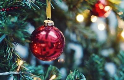 Arrestan a hombre que tenía un árbol de Navidad hecho de marihuana