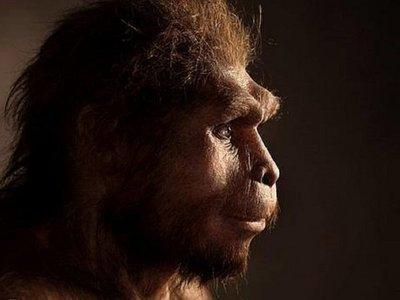Los últimos Homo erectus vivieron hace unos 117.000 años