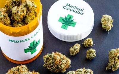 Cannabis medicinal: Senador afirmó que no se puede limitar cantidad de laboratorios