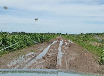 Transitabilidad de caminos rurales lastima a pobladores