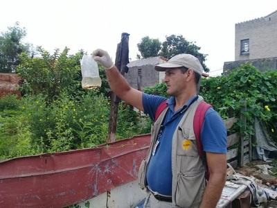 Nueve de cada diez casos de dengue se concentran en Asunción y Central