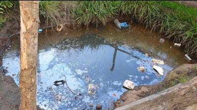 Criatura muere en una fosa cavada por buscadores de «plata yvyguy»