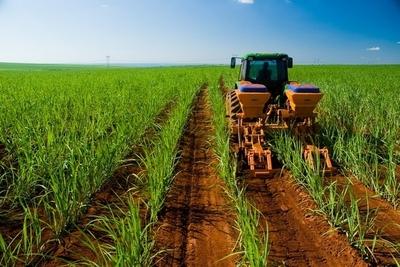 Sector agro se recuperó en los últimos meses