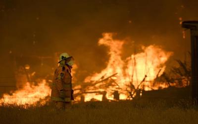 Australia: Piden evacuar los bosques debido a los incendios forestales