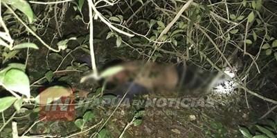 CAP. MIRANDA: JOVEN SE ARROJÓ DESDE LO ALTO DE UN ÁRBOL PARA SUICIDARSE
