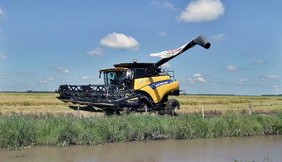 Presidente ratifica apuesta al sector productivo durante inicio de siembra de arroz