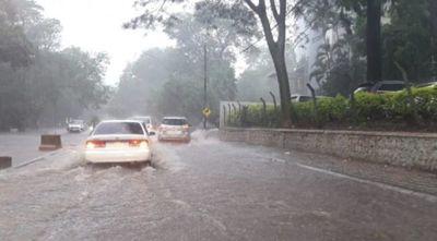 Tormenta causa estragos en Asunción: raudales, semáforos sin funcionar y árboles caídos