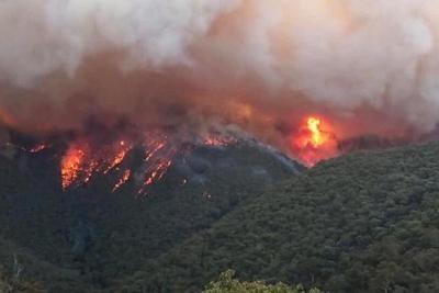 Humo de los incendios de Australia llega a Chile y Argentina