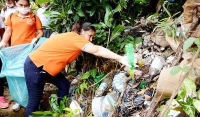 Proliferación de dengue: ruegan no automedicarse ante síntomas