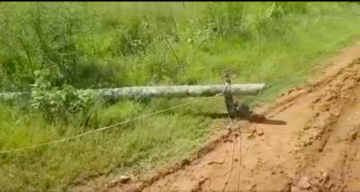 HOY / Cable suelto mata a un niño en Coronel Oviedo