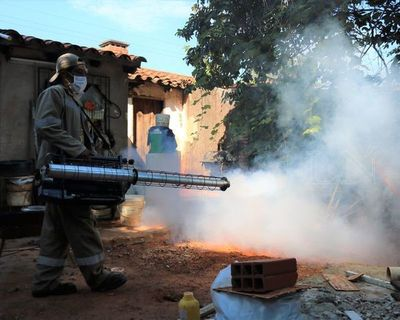Dengue: Buscan identificar criaderos por tierra y aire