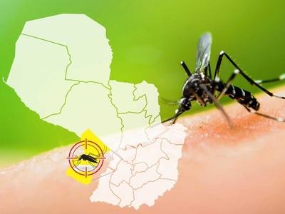 Dengue: radiografía de una epidemia en ascenso