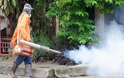 Senepa niega que usa productos vencidos para fumigar